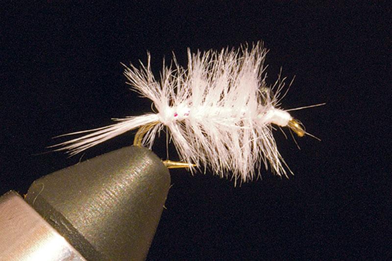 Big-Y-Fly-Company-Mysis-Shrimp fly