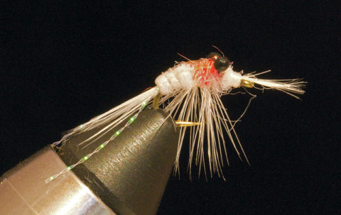 Great-Lakes-Mysis-Shrimp fly