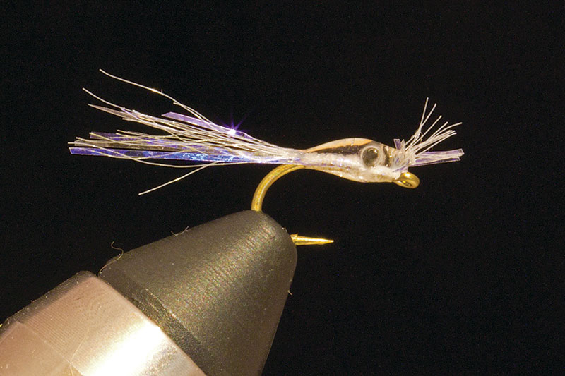 Mysis Shrimp Mylar Fly Fishing Nymph for Colorado Tailwater Trout Taylor River