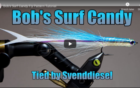 Watch @tightlineproductions take on Bob Popovics' Surf Candy. Video and story at the link in our bio.