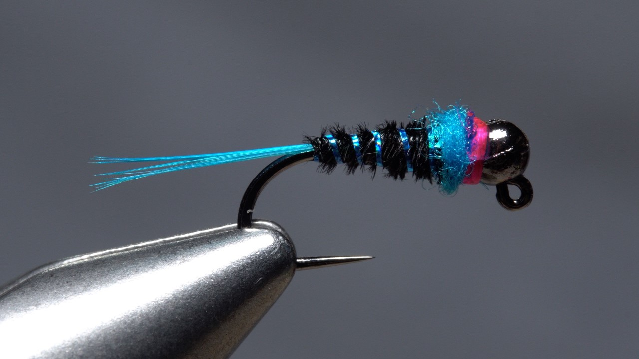 night king fly