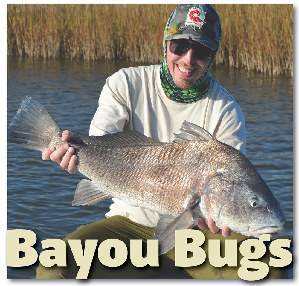 bayou bugs